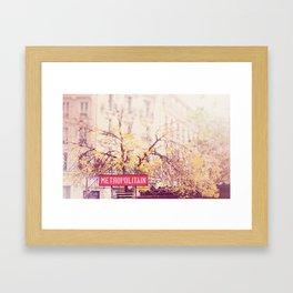 Metropolitian Paris  Framed Art Print