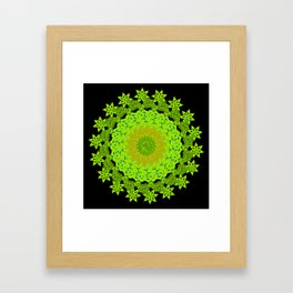 Shades Of Purple And Green Mandala Floral Design Framed Art Print
