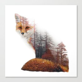Misty Fox Canvas Print