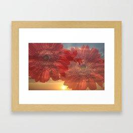 Flowers in the sunset Framed Art Print