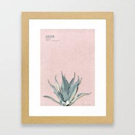Agave - botanical print rose Framed Art Print