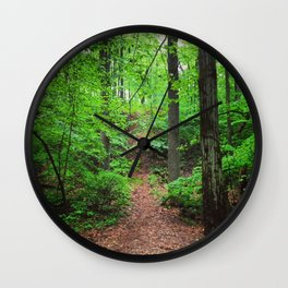 Iron Hill Park in Summer Wall Clock