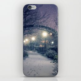 Winter Garden in the Snow iPhone Skin