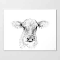 Moo ::  A Young Jersey Cow Canvas Print