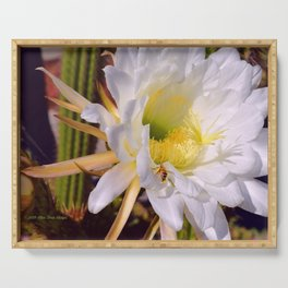 """Cactus Flower And Friend #1"" Photograph Serving Tray"