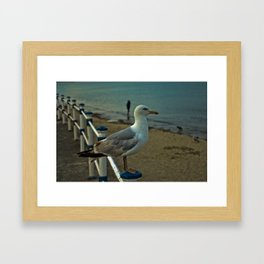 Beach King Framed Art Print