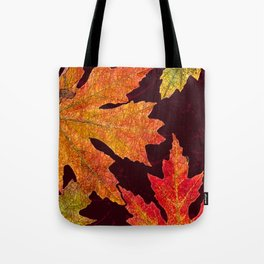 Leaves of Red Gold and Orange a Breath of Fall Tote Bag