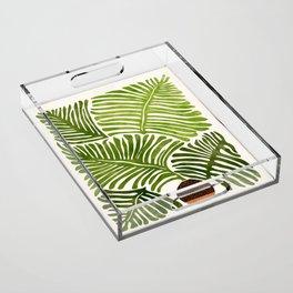 Summer Fern / Simple Modern Watercolor Acrylic Tray