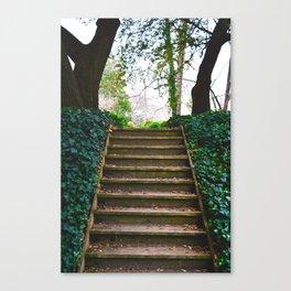 Companionway Canvas Print