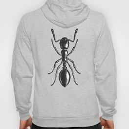 Ant 2 Hoody