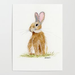 Butterscotch Rabbit - animal watercolor painting Poster