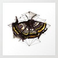The moth's path Art Print