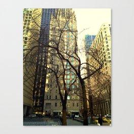 Tree versus Scraper #3 Canvas Print