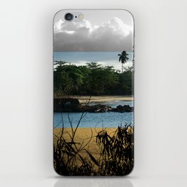 Changing nature iPhone Skin