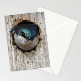 Meeting the New Nestbox Homeowner Stationery Cards