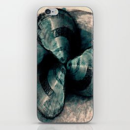 Shells in a row iPhone Skin