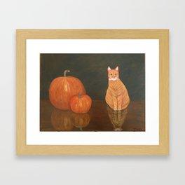Kip the cat and his pumpkins Framed Art Print