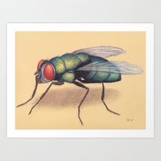 Fly by Lars Furtwaengler | Colored Pencil / Pastel Pencil | 2011 Art Print