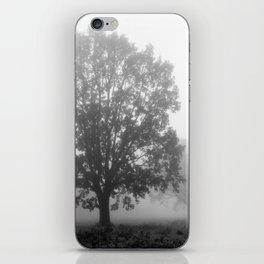 Trees on a Misty Morning iPhone Skin