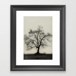 Bare Branches in Winter Fog Framed Art Print
