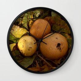 mandarin & grapefruit Wall Clock