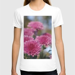 Rosy Chrysanthemum with gold leaves, blue sky T-shirt