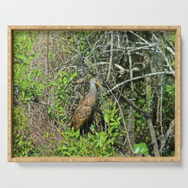 The Limpkin Serving Tray
