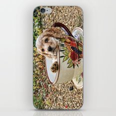 Teacup Puppy iPhone & iPod Skin