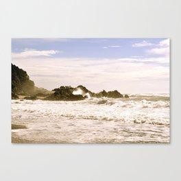 New Zealand coastline Canvas Print
