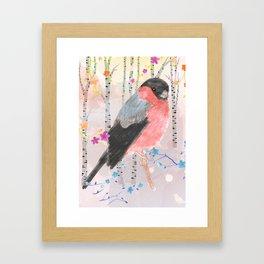 Bullfinch in the birch tree forest Framed Art Print