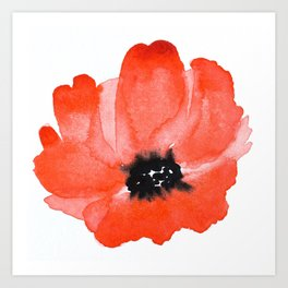 Red Poppy Watercolour Art Print