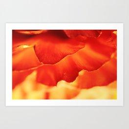 Orange Warm Floral Wall Art - Buttercup - Spring Flower - Detail Botanical Print - Macro Photography Art Print