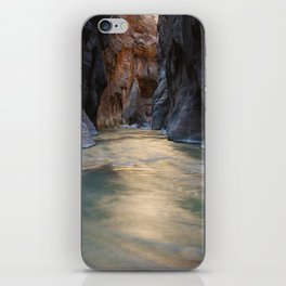 Wall Street iPhone Skin