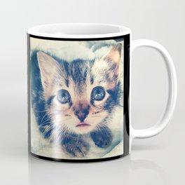 The Kitten Coffee Mug