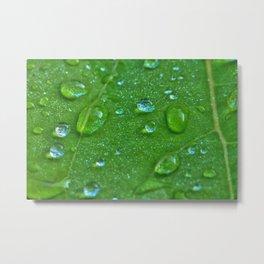 Wassertropfen Metal Print