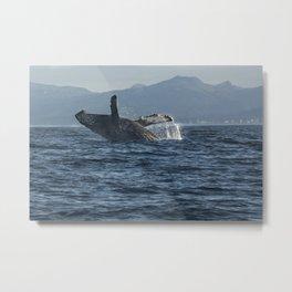Alaskan Whale Photography Print Metal Print
