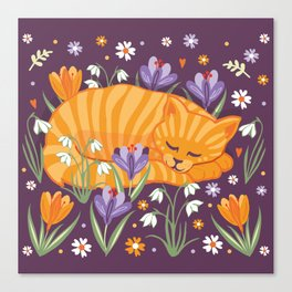 Sleepy Cat in a Spring Garden Canvas Print