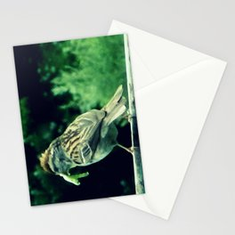 A Delicate Morsel Stationery Cards