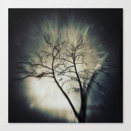 tree in dreamland Canvas Print