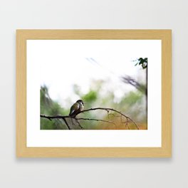 Nature at its finest  Framed Art Print