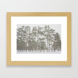 Natural Symmetry Framed Art Print