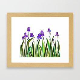 Large Purple Irises Framed Art Print