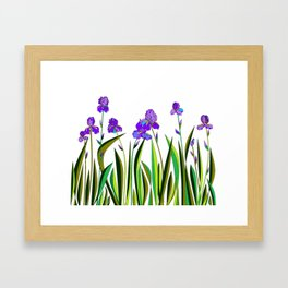 Large Purple Irises Framed Art Print