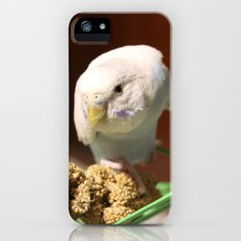 volo iPhone Case