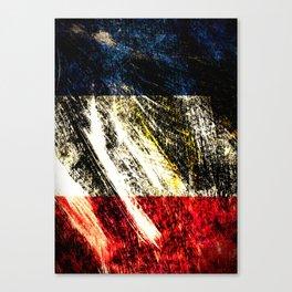Drapeau Tricolore Canvas Print