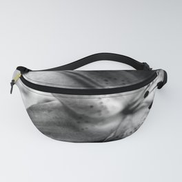Casablanca Lily Fanny Pack
