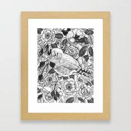 Zebra finch and rose bush ink drawing Framed Art Print