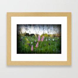 Spring flowers #2 Framed Art Print