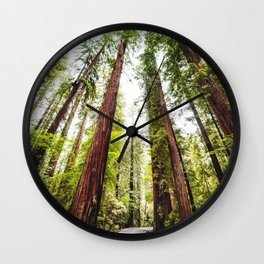humboldt redwood forest Wall Clock