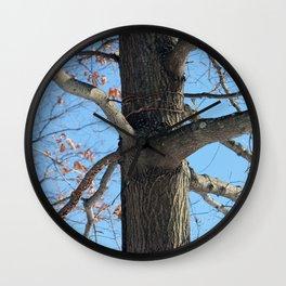 Tree and beautiful blue sky Wall Clock